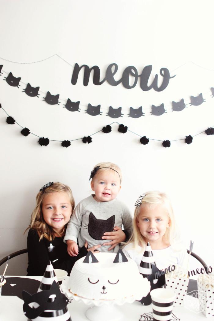 MEOW kitty party
